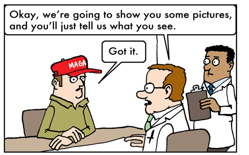 Image result for trump supporter cartoon