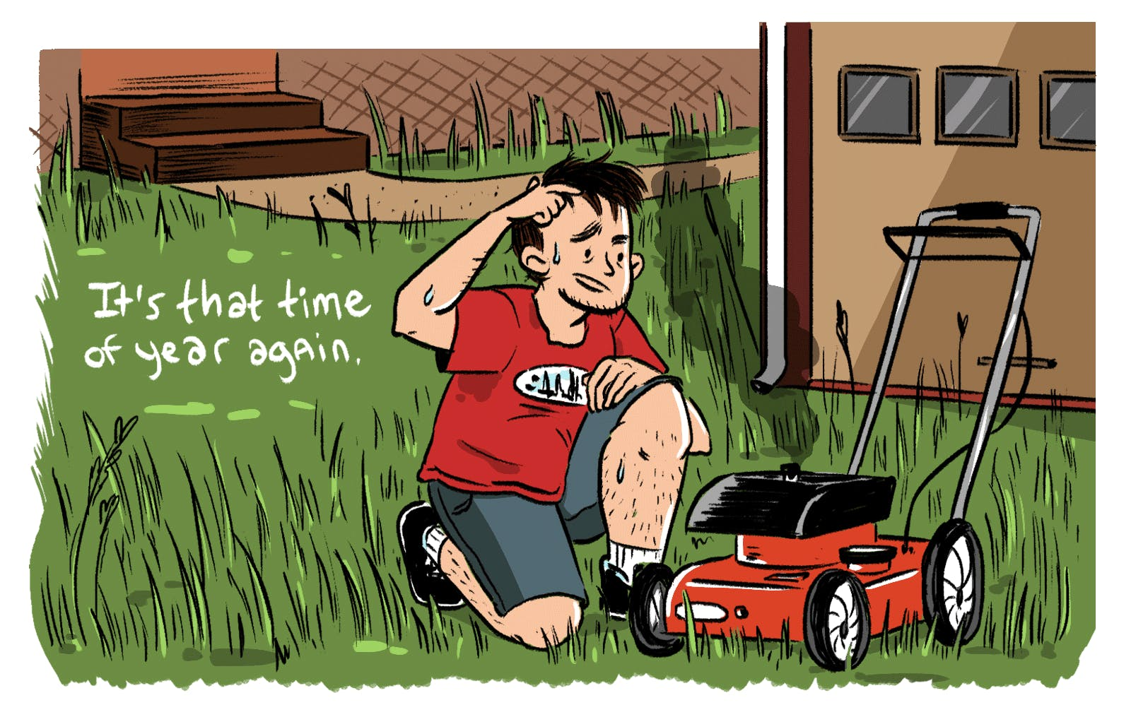Mowing Your Lawn Good Don T Do It By Ted Steinberg