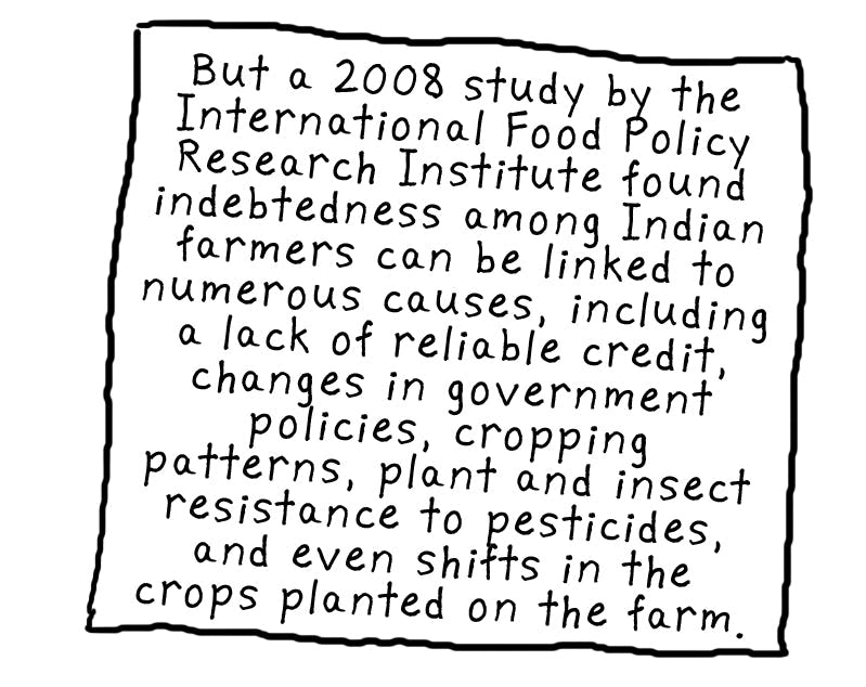 GMOs Are Making an Agricultural Crisis in India Even Worse